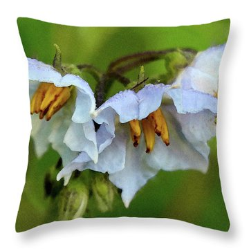 Two Rivers June 2017 Throw Pillow