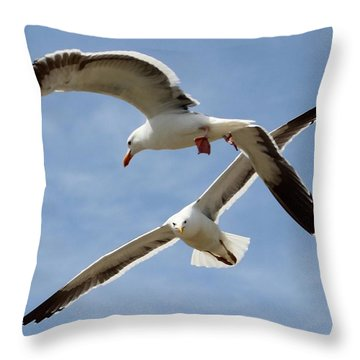 Two Seagulls Almost Collide  Throw Pillow