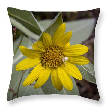 Two Spiders Throw Pillow