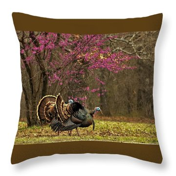 Two Tom Turkey And Redbud Tree Throw Pillow by Sheila Brown