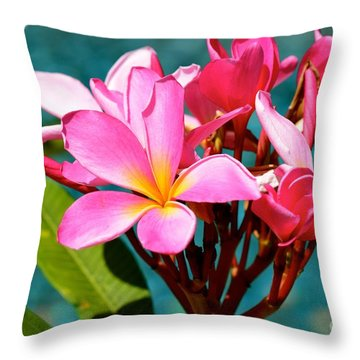 Two Tone Beauty Throw Pillow by Johanne Peale