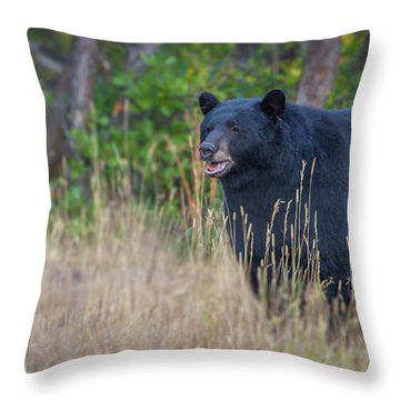 Two Track Encounter  Throw Pillow