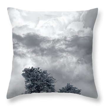 Two Trees #9249 Throw Pillow