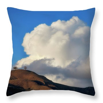 Two Trees At Ventura, California Throw Pillow