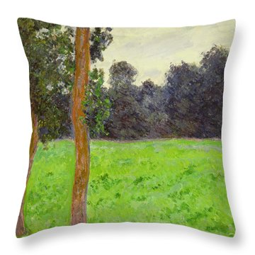 Two Trees In A Field Throw Pillow