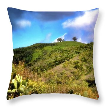 Two Trees In Spring Throw Pillow