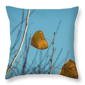 Throw Pillow featuring the photograph Two Warriors  by Ana V Ramirez
