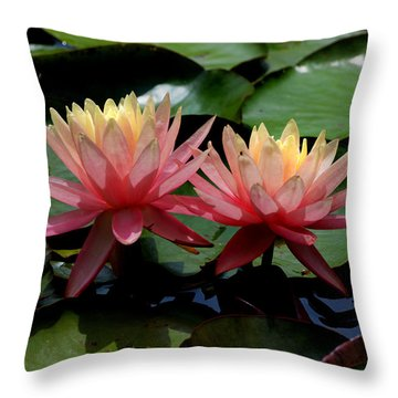 Throw Pillow featuring the photograph Two  Waterlilies  by Kathleen Stephens