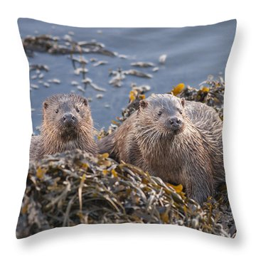 Two Young European Otters Throw Pillow