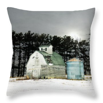 Throw Pillow featuring the photograph Twos Company by Julie Hamilton