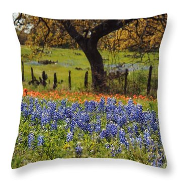 Tx Tradition, Bluebonnets Throw Pillow by Lisa Spencer
