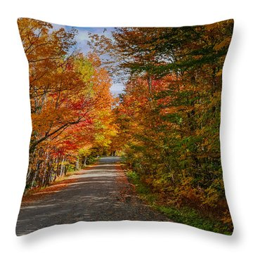 Typical Vermont Dirve - Fall Foliage Throw Pillow