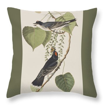 Tyrant Fly Catcher Throw Pillow by John James Audubon