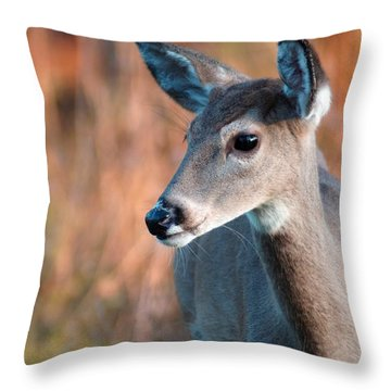 Tzavaot Throw Pillow by Bill Stephens