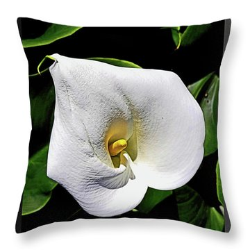 U R Invited Throw Pillow
