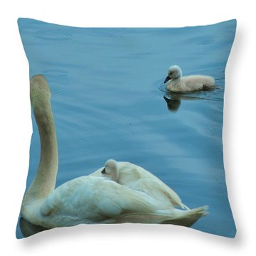 Ugly Ducklings Throw Pillow