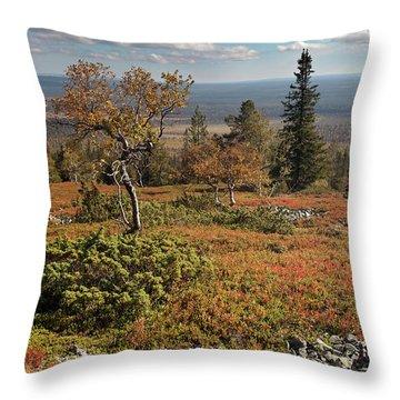 Fall Colors, Kiirunankieppi Throw Pillow