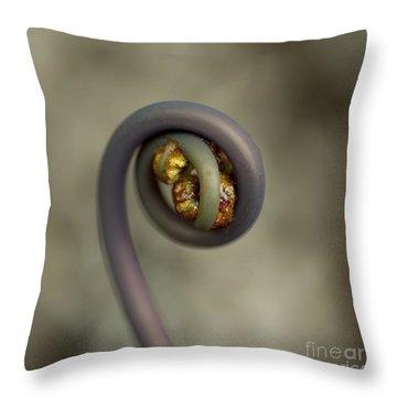 Uluhe Fiddlehead Throw Pillow