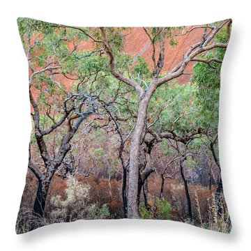 Uluru 05 Throw Pillow
