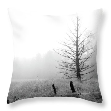 Unadorned Throw Pillow