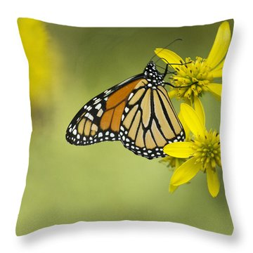Unattached Purity Throw Pillow