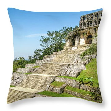 Unburied Throw Pillow