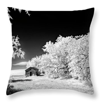 Under A Dark Sky Throw Pillow by Dan Jurak