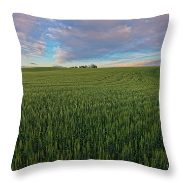Under A Summer Sky Throw Pillow