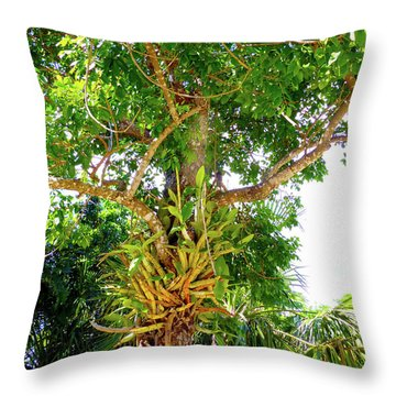 Throw Pillow featuring the photograph Under A Tropical Tree M by Francesca Mackenney