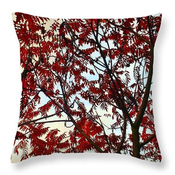 Under Fire Trees Throw Pillow by Danielle R T Haney