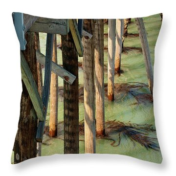 Throw Pillow featuring the photograph Under San Simeon Pier by Art Block Collections