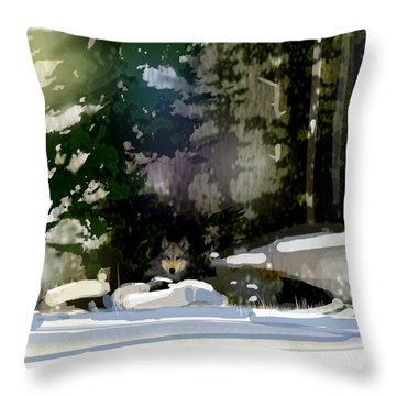Under Surveillance Throw Pillow