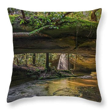 Under The Arch. Throw Pillow