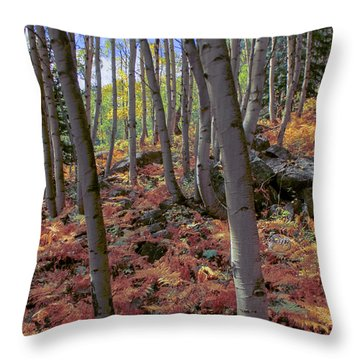 Under The Aspens Throw Pillow by Perspective Imagery