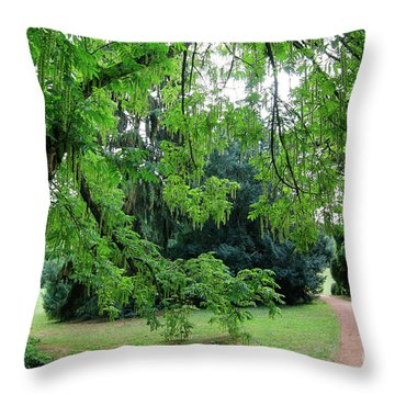 Throw Pillow featuring the photograph Under The Branches Of A Large Tree by Michal Boubin
