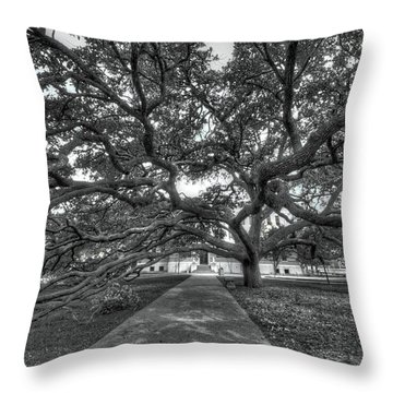 Under The Century Tree - Black And White Throw Pillow
