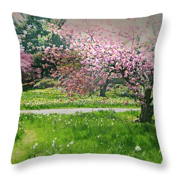 Throw Pillow featuring the photograph Under The Cherry Tree by Diana Angstadt
