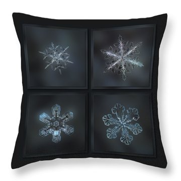 Under The Grey Sky Throw Pillow