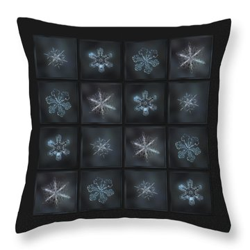 Under The Grey Sky II Throw Pillow