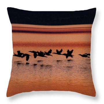 Throw Pillow featuring the photograph Under The Radar by William Norton
