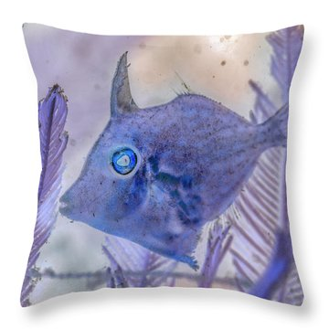 Throw Pillow featuring the photograph Under The Sea Colorful Watercolor Art #8 by Debra and Dave Vanderlaan