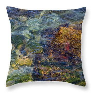 Under The Sea Throw Pillow by John Hoey