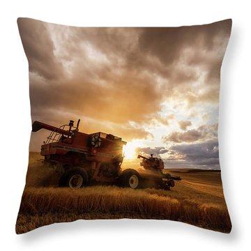 Under Threatening Skies Throw Pillow