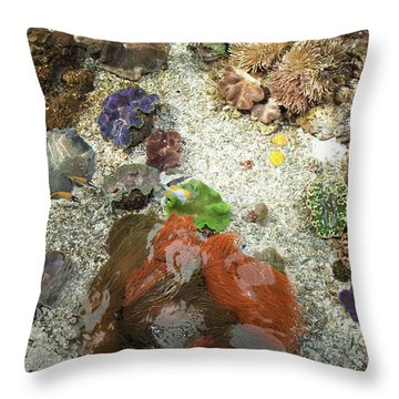 Throw Pillow featuring the photograph Under Water Life by Carol Lynn Coronios
