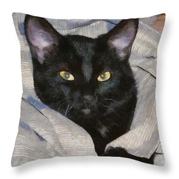 Undercover Kitten Throw Pillow