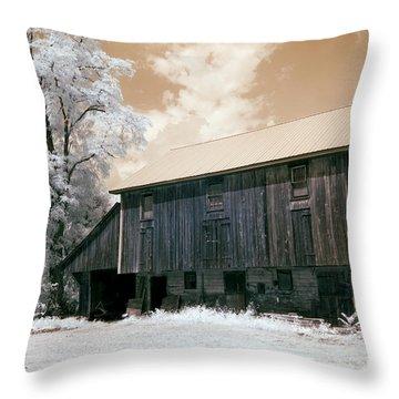 Underground Railroad Slave Hideout Throw Pillow