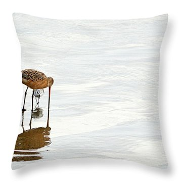 Throw Pillow featuring the photograph Underpass by AJ Schibig