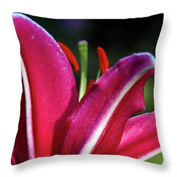 Underside Of Asiatic Tiger Lily 1653 H_2 Throw Pillow