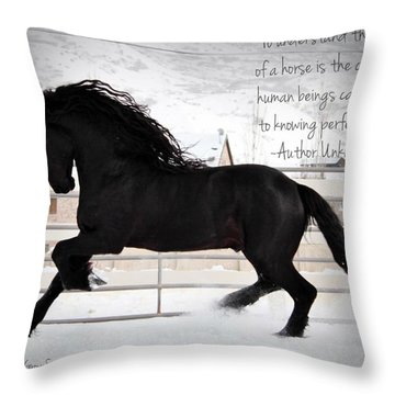 Understand The Soul Of A Horse Throw Pillow