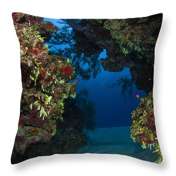 Underwater Crevice Through A Coral Throw Pillow by Todd Winner